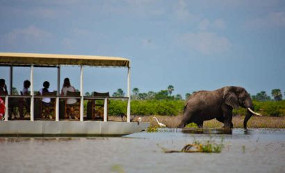 Boat safari in Selous