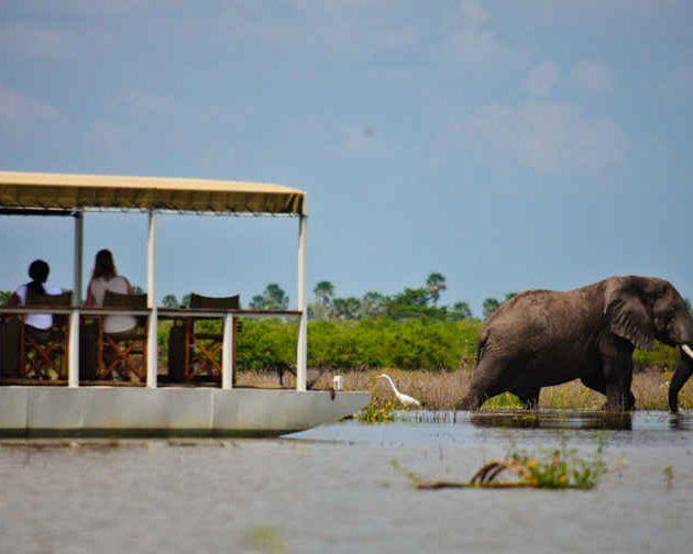 Boat safari in Selous