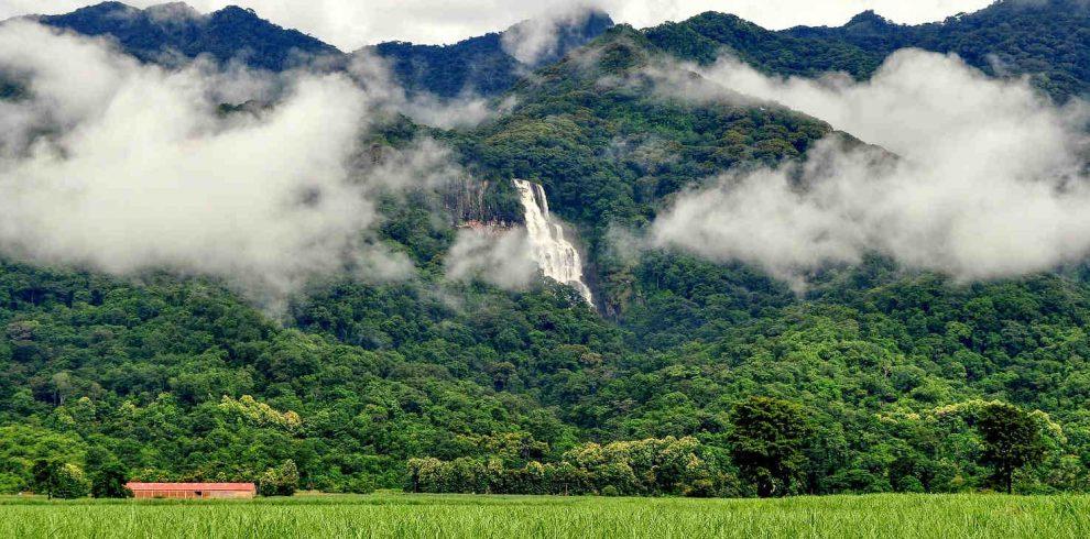 Udzungwa Mountains National Park