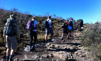 Mount Kenya trekking-on-sirimon-route1